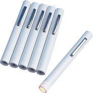 Disposable Pen Torch