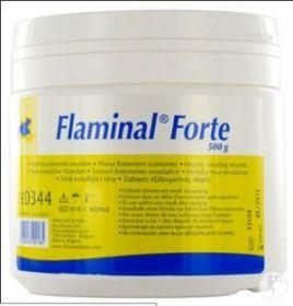 Flaminal Forte Antimicrobial Gel 500g [Tub]