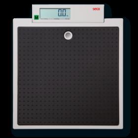 seca 875 Electronic flat scale