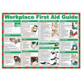 Workplace First Aid Guide Poster with Frame