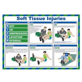 Soft Tissue Injuries Poster with Frame