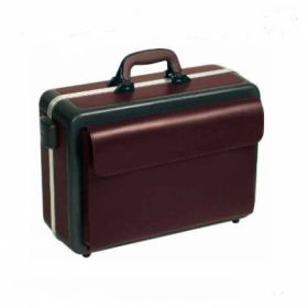 Bollmann Progress Case with Illumination, Grey/Burgundy