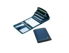 Bollmann Document Large Case, Blue [Pack of 1]